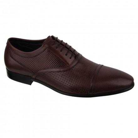 Туфлі чоловічі Welfare 550134211/BRN/34
