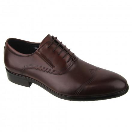 Туфлі чоловічі Welfare 120601211/BRN/35
